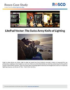 Litepad Vector 174 Daylight Rosco